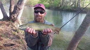 Brown Trout — barberfishing Nokill