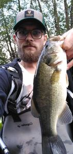 Largemouth Bass — Alexandre Angibaud