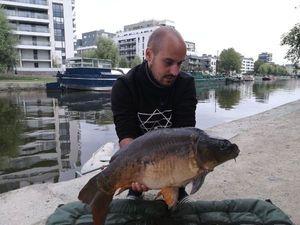 Mirror Carp — Maxime Hamon-gillet