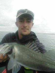 European Bass — Adrien Brostin