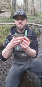 Brown Trout — Amaury Targnion