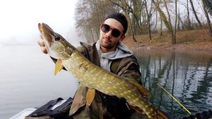 Northern Pike — Robin Loffredo