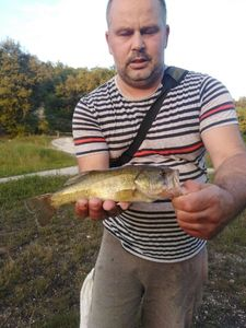 Largemouth Bass — Sébastien carna16