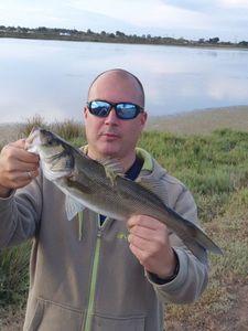 European Bass — Seb Occitanie Fish