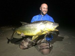 Giant African Threadfin — Michael Kilijanski