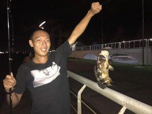 Mérou Goliath — Jiaqi Zhang