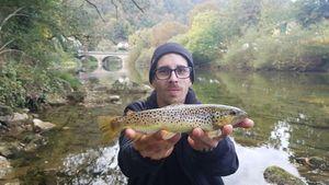 Common Trout — chasseur de brocosaure sur insta suivez moi