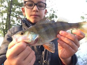 Perche Commune — Fish & Fils