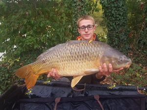 Common Carp — Tyno  Arlaud