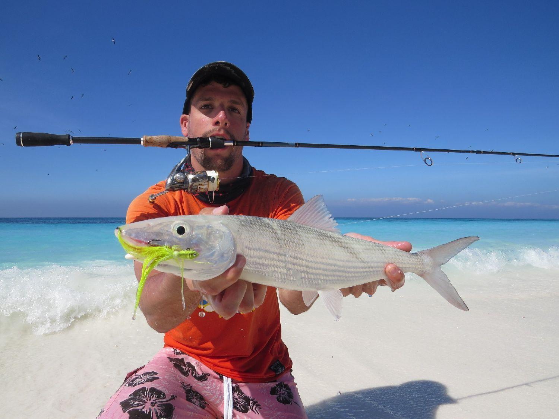 Roundjaw Bonefish