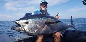Bluefin Tuna — José PELEGRIN (CCBM Navicom)