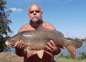 Common Carp — Bruno Thomas