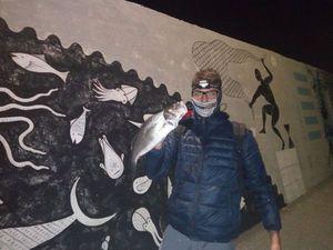 European Bass — Matteo Baiocco
