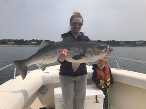 Striped Bass (Landlocked) — Justin Roy