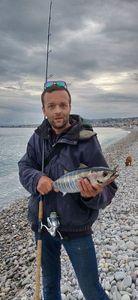 Bluefin Tuna — Eudes Chabot
