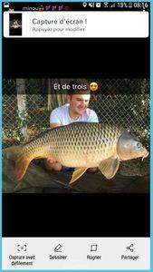 Common Carp — Lou Cordebeuf