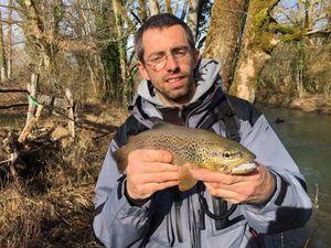 Brown Trout — Franck Recamier