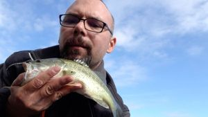 Smallmouth Bass — Christophe Dannoot