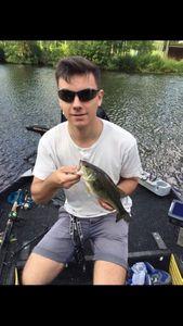 Largemouth Bass — Fradin Tom
