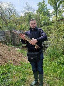 Northern Pike — Maxime Fisss