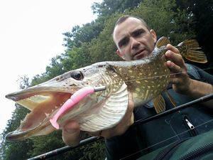 Northern Pike — anthony MORIN