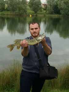 Northern Pike — Romain Trte