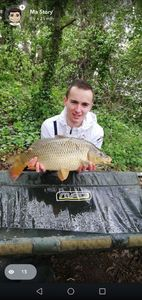 Common Carp — Mathieu Yvorra