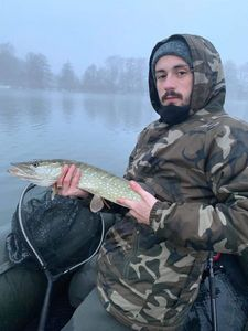 Northern Pike — Jeremy Renerte