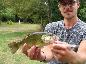 Smallmouth Bass — Florian Bultez