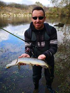 Northern Pike — Jojo Lasticot Blanchard