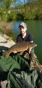 Common Carp — Geoffrey Nanty