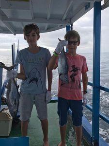 Bluefin Tuna — Marius Libre