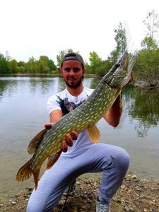 Northern Pike — Mathieu Dauchez