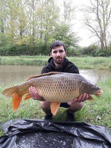 Common Carp — Mathieu Baudier(team carnacarp 03 )