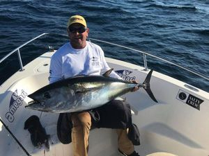 Bluefin Tuna — Steeve Doucet