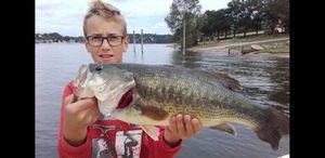 Largemouth Bass — multifishing