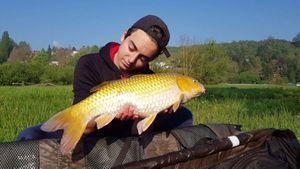 Koï Fish — Lubin Arus