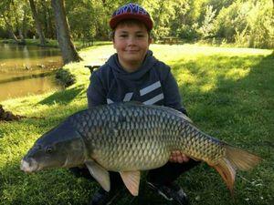 Common Carp — Nolan Ailloud-Buthion