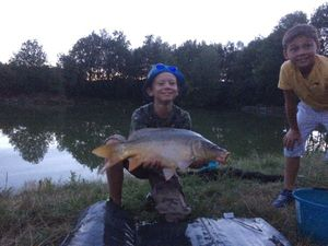 Mirror Carp — Tom Richet