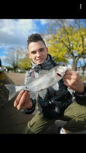 Australian Bass — Batiste Blanc