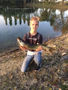 Northern Pike — Titou Quillet