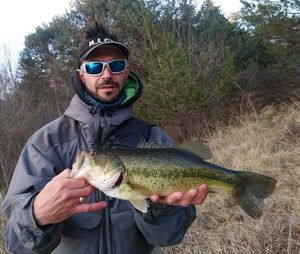 Largemouth Bass — Pueblo Lolo