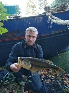 Largemouth Bass — Aurélien Potier