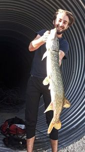 Northern Pike — Kevin GP