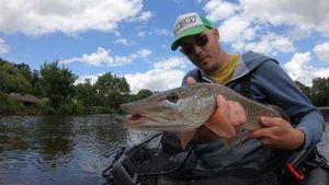 Northern Pike — Ephory Fishing