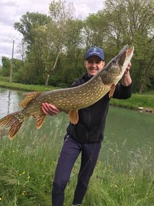Northern Pike — Quentin Ferres