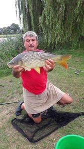 Common Carp — Guy Lhomme