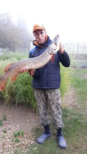 Northern Pike — DUPONT QUENTIN