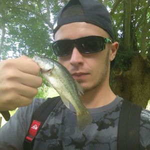 Largemouth Bass — Julien Champion