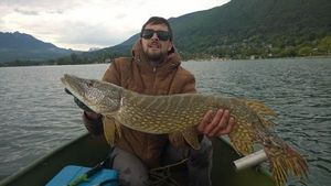 Northern Pike — Jerome Marini